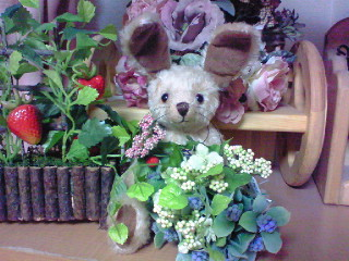 花束を抱えたうさちゃん
